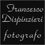 Francesco_Diaspinzieri_logo1