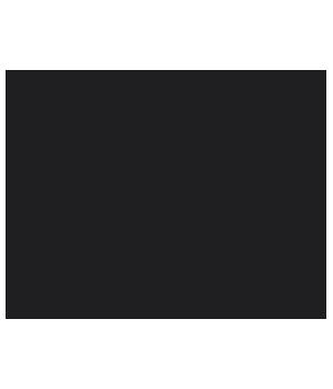 Paula Niculita